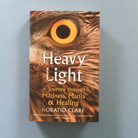 Heavy Light : A Journey Through Madness, Mania and Healing